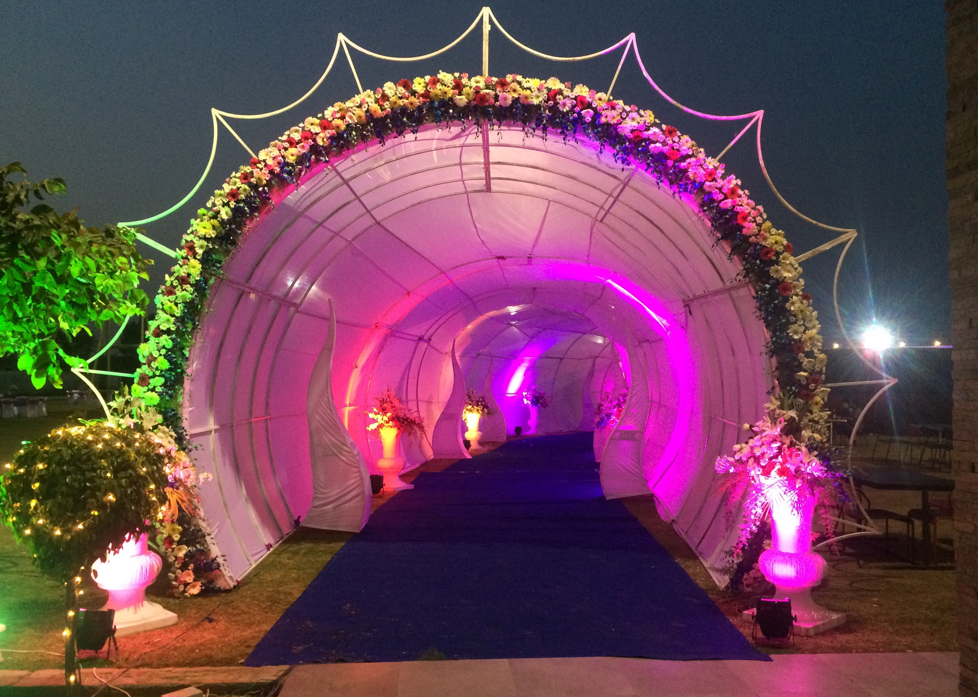 Wedding Stage Fiber Stage Iron Stage In Wedding Wedding